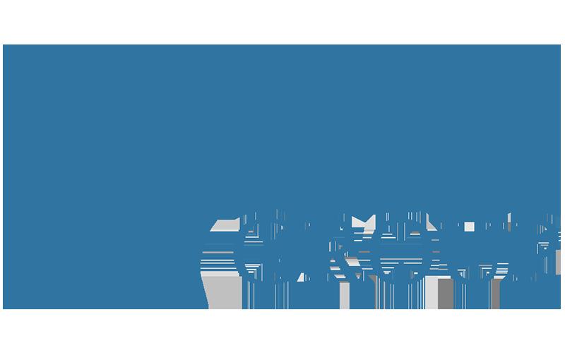 Visage Group